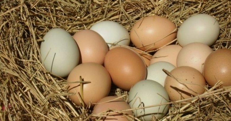 """""""Köy yumurtası hilesi"""" sona eriyor"""