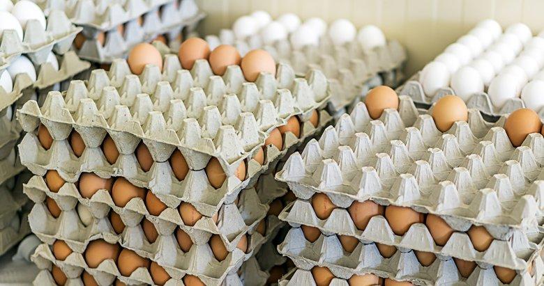 İzmirde zam şampiyonu yumurta