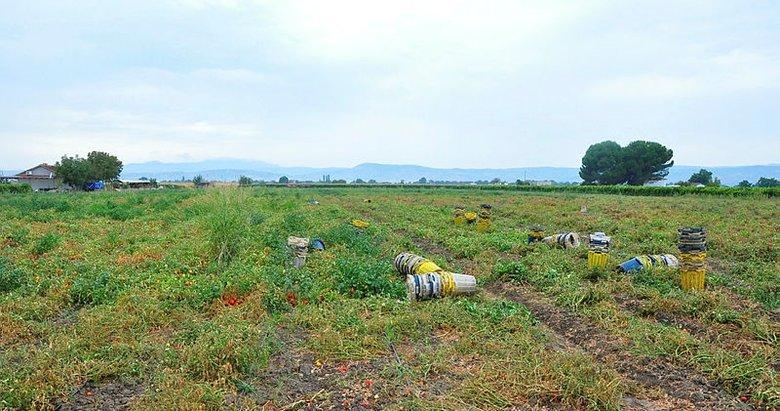 Manisa'da şiddetli yağmur ekili alanları vurdu