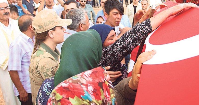 PKK 'ya darbe vuruluyor