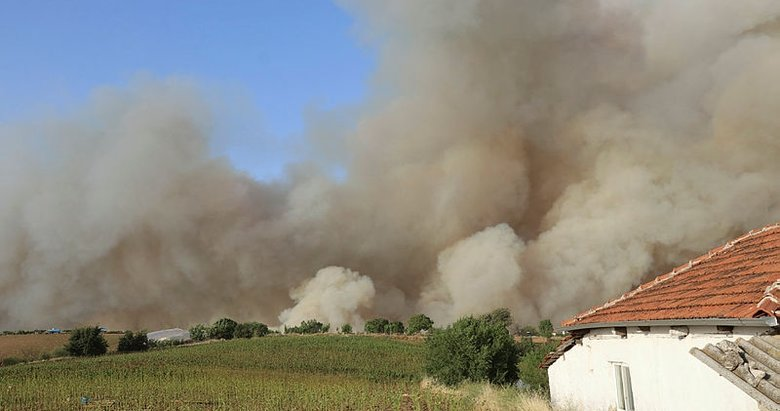 Son dakika: Bölgeden güzel haberler geliyor! Denizli'deki orman yangınları kontrol altına alındı