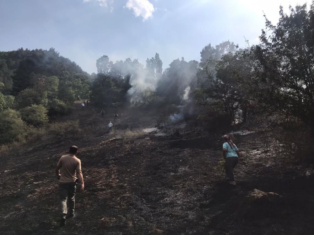 Balıkesir Sındırgı'da 30 dönüm arazi yandı