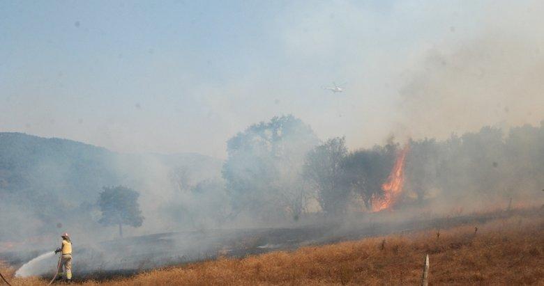 Çanakkale'de ormanlık alanda çıkan yangın büyümeden söndürüldü