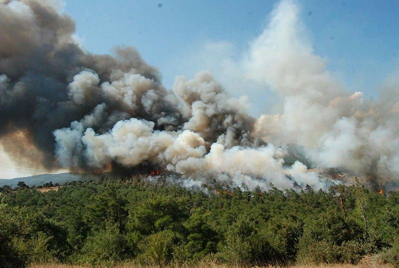 Çanakkale'de büyük orman yangını