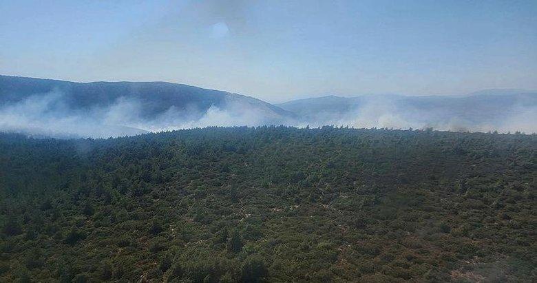 İzmir Karaburun'daki orman yangını 14 saat sonra kontrol altında