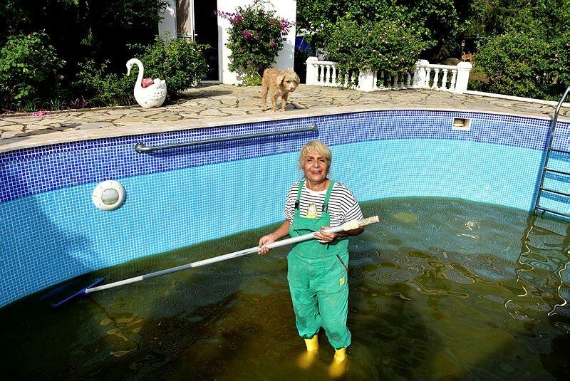 Muğla'da şok eden olay! Komşuları şikayet edince can dostları için havuzlu villa aldı