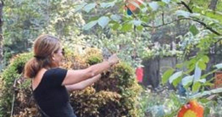 Sıfır Atık Projesi ile ağaçlar korundu