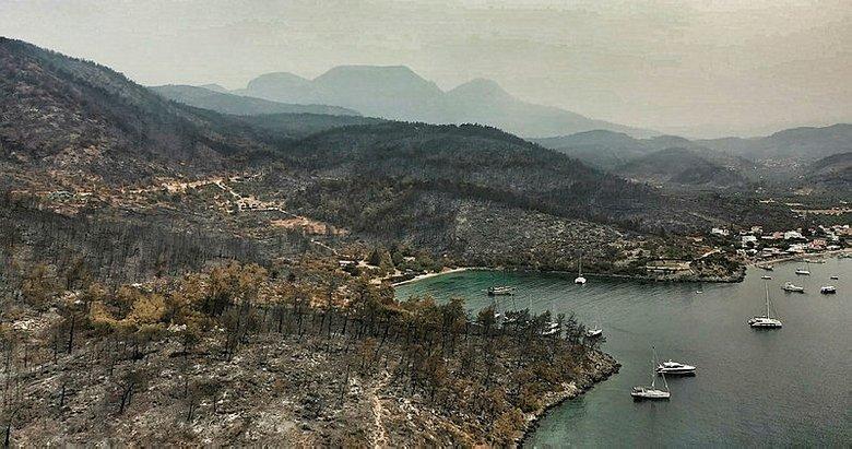 Yanan ormanlık alanların görüntüleri tehlikenin büyüklüğünü gösteriyor
